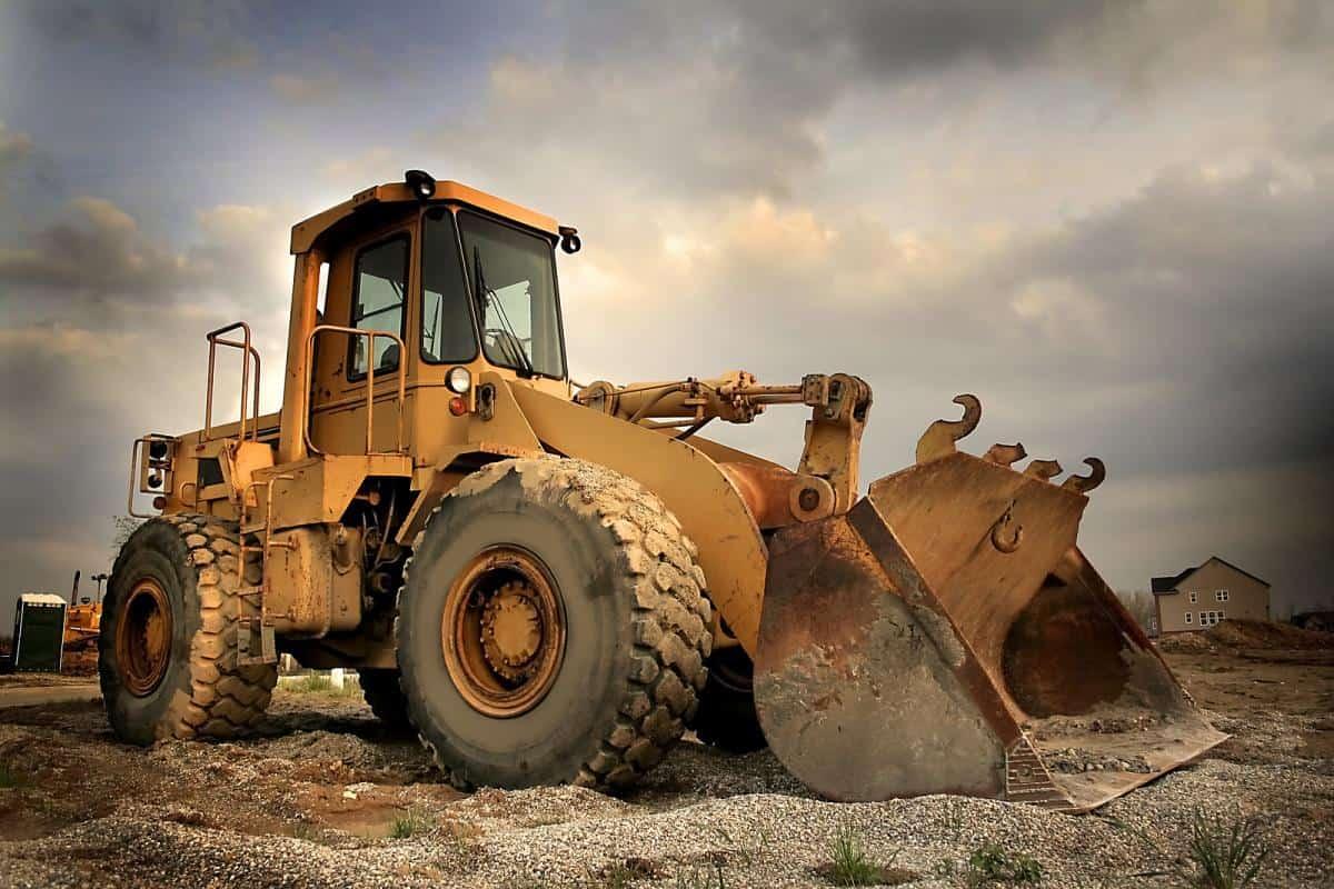 Heavy Bobcat